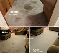 FREE CARPET STAIN REMOVAL, FREE ODOR REMOVAL!! DEAL!!!