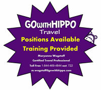 Travel Professional - Position Available - Training Provided