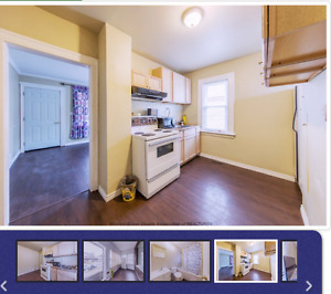 Room for rent $400 1769 Rooney