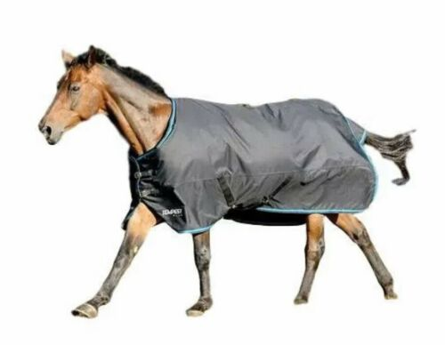 Horse Blanket Hood Neck Cover Breathable 420D Winter Weight 300g Fill Insulation