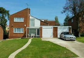 Room to rent in Boxford, Suffolk