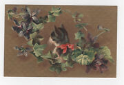 Antique Postcard Germany