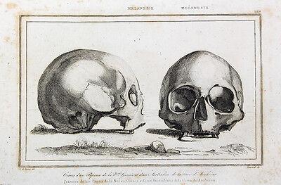 Arnhemland Australien Aborigines Schädel Skull Neuguinea Papua Ozeanien Skelett