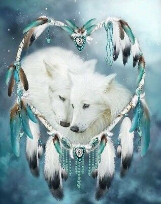 Native American Dream Catcher Wolves Of Love 8.5x11 Matte Art