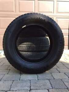 4 - Michelin Latitude X-ice Tires