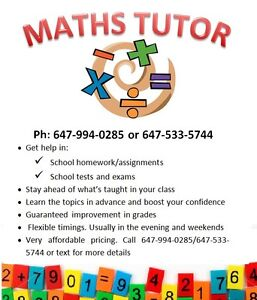 Maths Tutor - Personalized and affordable service Kitchener / Waterloo Kitchener Area image 1