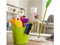 Domestic clean / Regular clean