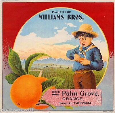 Orange County Palm Grove Orchard Boy Orange Citrus Fruit Crate Label Art Print