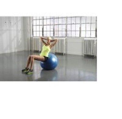 Anti-Burst Exercise Body Ball 65cm 05-0866GG1