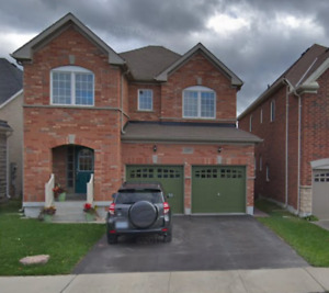Sunny 1 Bedroom Walk-Out Basement Apartment in North Oshawa
