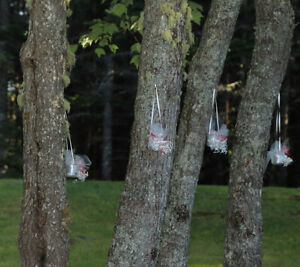 Hanging votive candles for wedding decorations