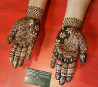 Eid Mehendi / Henna and Trends Studio Westwood Mall Mississauga