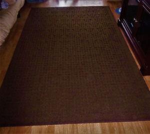 Carpettes brunes comme neuves NÉGOCIABLES
