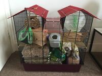 Hamster cage + extras