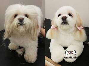 Kim's DOG grooming SALON Kewdale Belmont Area Preview