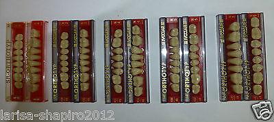 Lot X10 Set Of 8  Dental Acrylic Resin Teeth Orthotyp Ivoclar Vivadent Naturno