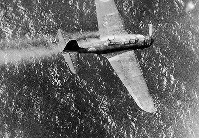 WWII Photo Japanese  Dive Bomber Shot Down Truk WW2
