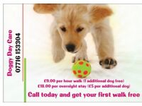 Dog walker & sitter - 9.00 per hour. First walk free- 2 dogs for the price of 1.