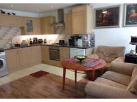 The room to rent in Beeston, Nottingham