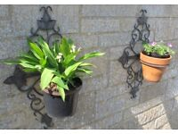 Hanging Baskets and Wall Pot Holders