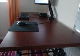 Adjustable desk 55 inches