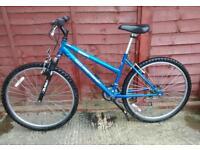 BSA mountain Bike