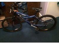 CHEAP Raleigh Boys Mountain Bike