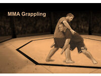 MMA grappling / wrestling / jiu-jitsu training partner