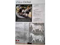 Horse Driving Harness by Zilco