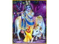 Top-Best Indian Astrologer in sutton/ Spiritual Healer/ Clairvoyant/ Black Magic Removal/ Psychic Uk