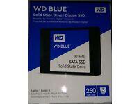Brand new 250GB Western Digital SSD