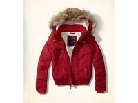 Hollister red all weather bomber jacket new sizeL
