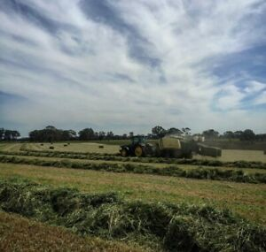 HAY AND SILAGE SEASON WORKER WANTED