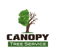 TREE REMOVAL SERVICE     613-601-6490