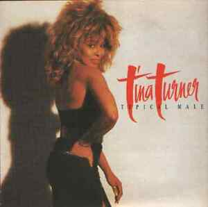 Tina-Turner-typical-male-7