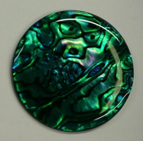 16mm Natural Paua Shell Green Calibrated Round Cabochon Gemstones Gems Jewelry