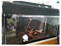 Large Fish tank 48x28x28