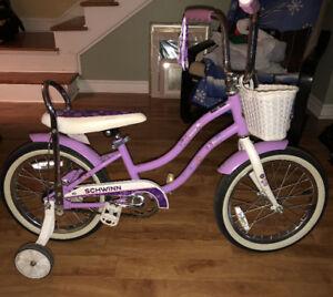 Kids 16 inch Schwinn Jamboree bike with basket.