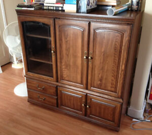 Stereo and TV Cabinet with lots of extra storage