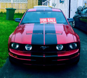 2005 Anniversary Ford Mustang
