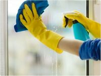 domestic house offices and restaurant cleaning