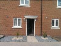 A very nice 2 bedroom house, new build very modern(Room to rent).