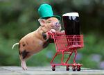 Ham's Miscellaneous Mart