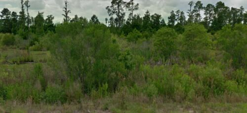 4.82 Acres in Central Florida: Private & Secluded Lot! Only 20 Miles from Disney