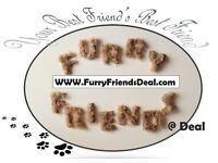 Dog Walking and Pet sitting services for Deal, Walmer and Surrounds