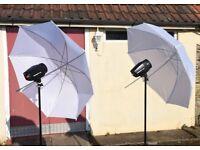 neewer studio flash kit