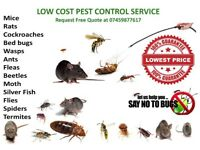 Mice, Rat, Bedbugs, Ants, Flea, Beetle, Wasps, Spiders, Moth Guaranteed Pest Control in London 24/7