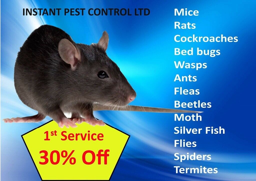 100% Guaranteed Pest Control 24/7(Bedbugs, Mice, Rat, Cockroach,Wasps,Ants,Flea,Beetle,Moth,Spiders)