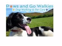 Paws and Go Walkies - Professional Registered Dog Walker Edinburgh East