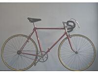 Superb Lightweight Single speed freewheel/not fixie, bike Serviced